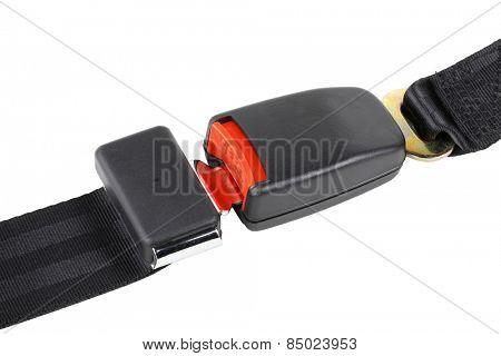 seat belt poster
