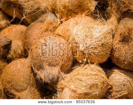 Fresh coconuts at the openair market in Thailand