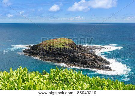 Mokuaeae Island at the  Kilauea Point, Hawaii