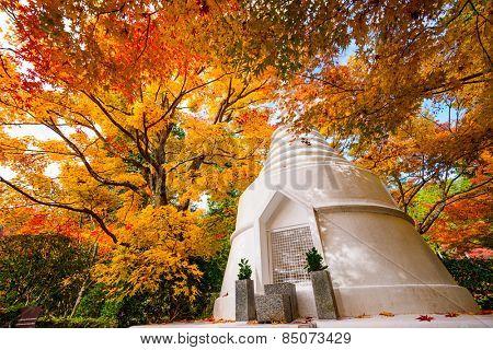 Pagoda during the fall at Ryoan-ji in Temple Kyoto, Japan. poster