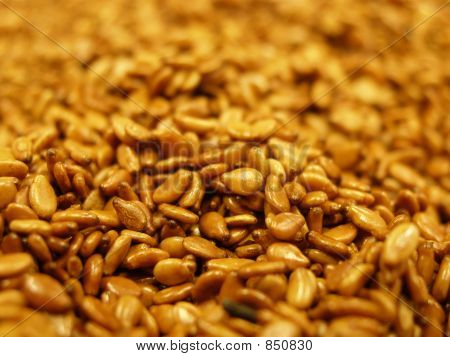Tiny Sesame Seeds