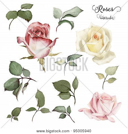 Roses And Leaves, Watercolor, Can Be Used As Greeting Card, Invitation Card For Wedding, Birthday An