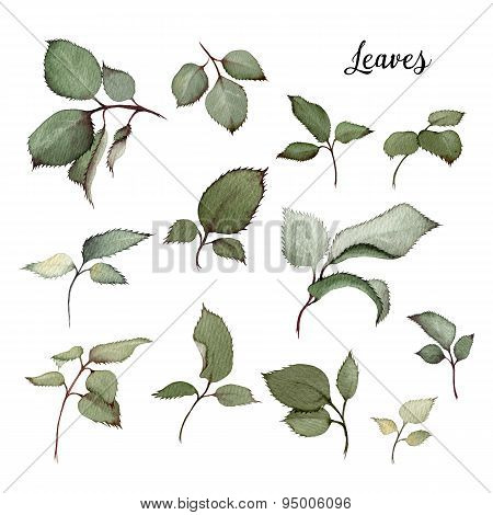 Leaves, Watercolor, Can Be Used As Greeting Card, Invitation Card For Wedding, Birthday And Other Ho