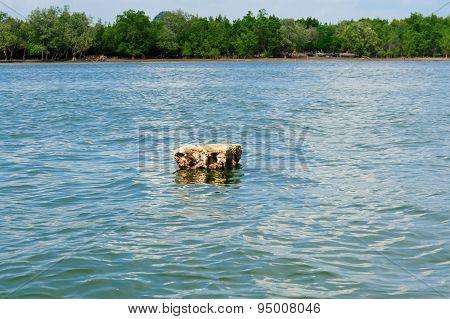 Polystyrene Float On The Sea