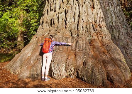 Woman embraces big tree in Redwood California