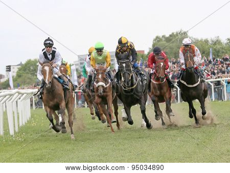 Tough Race Between The Race Horses