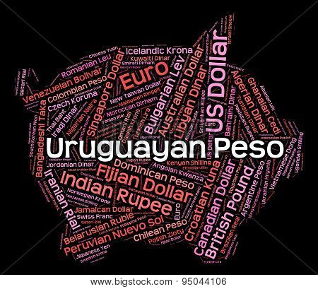 Uruguayan Peso Means Foreign Exchange And Coin