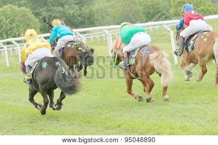 Rear View Of Four Racing Ponys