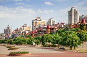 Green park on the embankment street in Kiyv poster