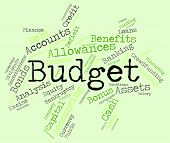 Budget Words Means Accounting Budgeting And Expenditure poster