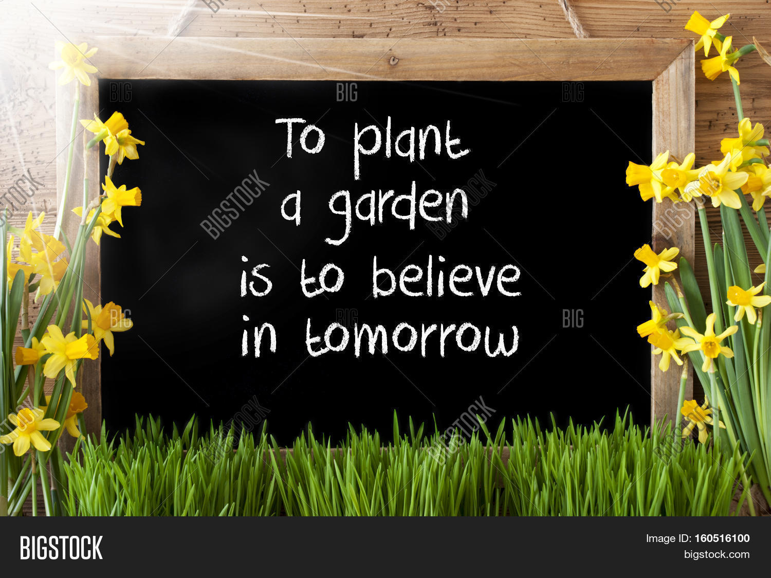Blackboard With English Quote To Plant A Garden Is To Believe In Tomorrow.  Sunny Spring