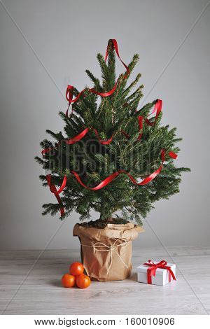 Bushy green scandinavian Christmas tree decorated with a shiny red ribbon with a small present and a few bright oranges on light gray background and wooden floor.