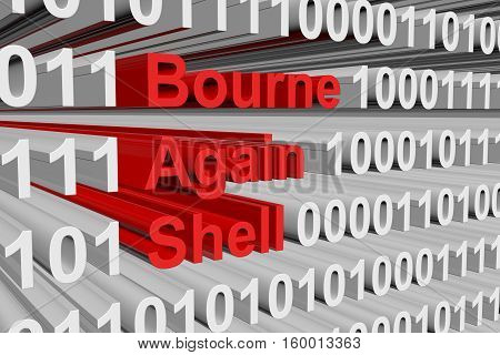 Bourne again shell in the form of binary code, 3D illustration