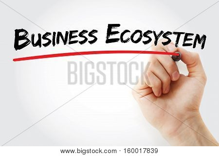 Hand Writing Business Ecosystem With Marker