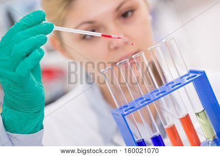 Assistant in laboratory with pipette research of cancer stem cells.  Female medical or scientific researcher using test-tube on laboratory.