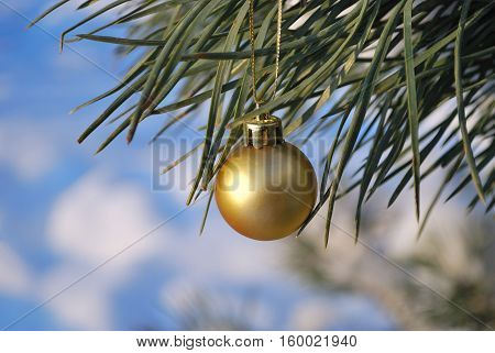Christmas toy on a branch of pine-tree on the background of snow