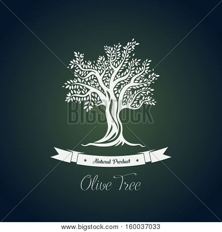 Fruit food plant or olive oil tree logo with branches. Vegetarian grove or ancient greece tree for production of olive oil. Good usage for bottle sticker or nature tree theme, olive cultivation banner