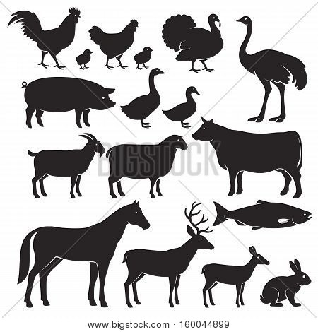 Farm animals silhouette icons . Vector illustrations.