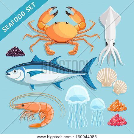Seafood Set. crab squid tuna shrimp jellyfish shellfish and caviar eggs. Vector Illustrations.