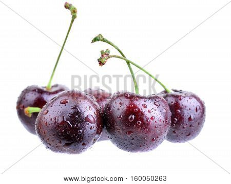 Several cherries with water drops isolated on a white background