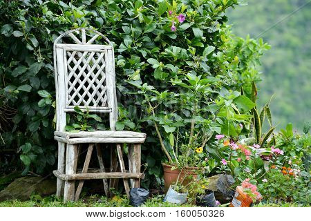 Old gardener chair in a flowering garden in the mountains of Panama