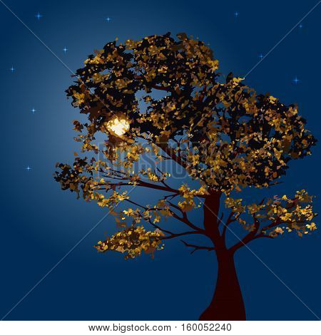 Autumn tree on a background lunar night and the starry sky. Vector illustration. Square location.