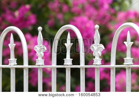 Close up of an old white iron railings decorative fence with flowers in the background