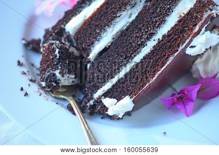 Chocolate cake dessert with four layers filled with vanilla cream on a white plate
