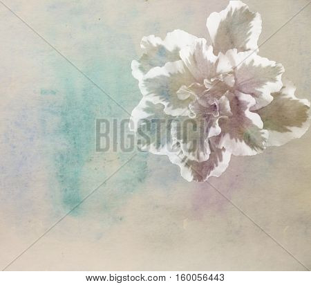 Scenic watercolor background with azalea flowers made with color filters
