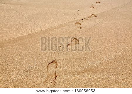 Footsteps on a sandy beach