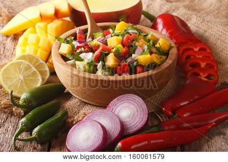 Salsa With Mango, Cilantro, Onions And Peppers Close Up And Ingredients On The Table. Horizontal