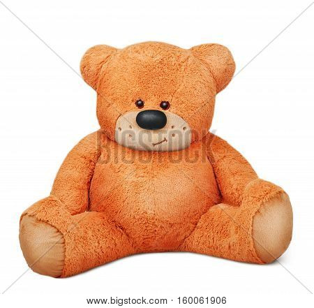 sitting brown teddy bear plush toy isolated over white background
