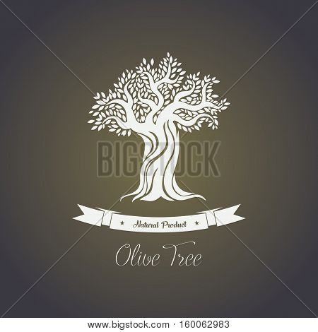 Foliage of olive oil tree in mediterranean greece. Vintage logo of olive tree, vegetarian food or drink backdrop, eco oil for painting logo. For olive oil bottle sticker or label, tree grove icon