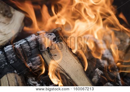 Logs On The Fire