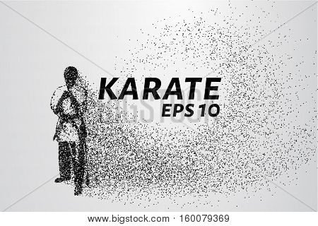 Karate Of Particles. Karate Consists Of Circles And Points. Vector Illustration