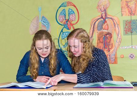 Two teenage girls studying with books in biology class near human body wall chart