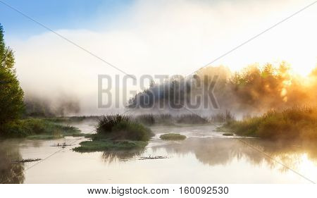 Sunrise on the river with fog. Trees in a fog on the river in the morning. The rays of dawn sunlight illuminate the landscape