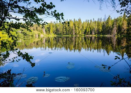Beautiful recreational areas on the island of Valaam. Karelia, north of Russia.