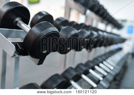 Row of heavy iron dumbbells on a rack at gym.
