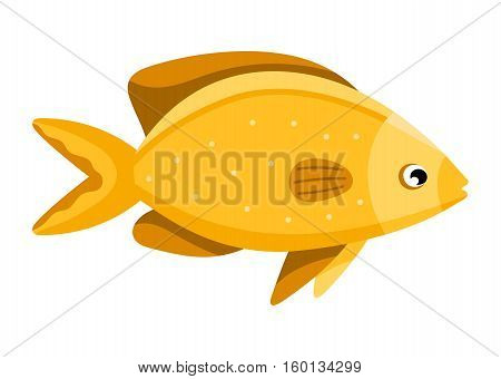 Coral reef tropical fish vector illustration. Vector sea fish isolated on white background. Funny cartoon aquarium fish icon