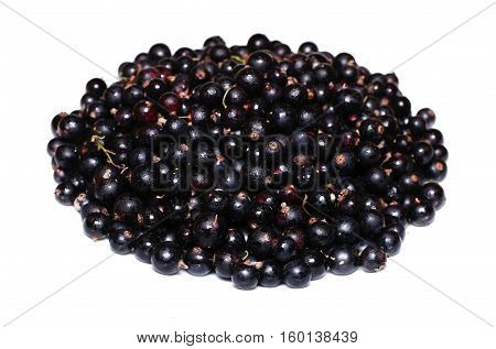 Many ripe black currant berries isolated on white background