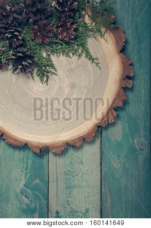 Wooden board with leaves of thuja and pine cones on blue wooden table