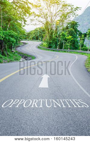 Opportunities written on S curve road in the green view.