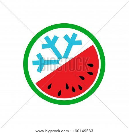 Vector summer concept greengrocer, abstract watermelon on white