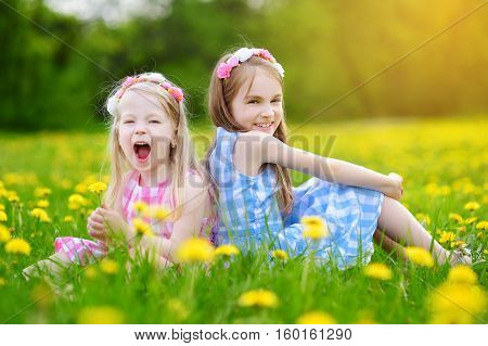 Adorable Little Girls Having Fun Together In Blooming Dandelion Meadow