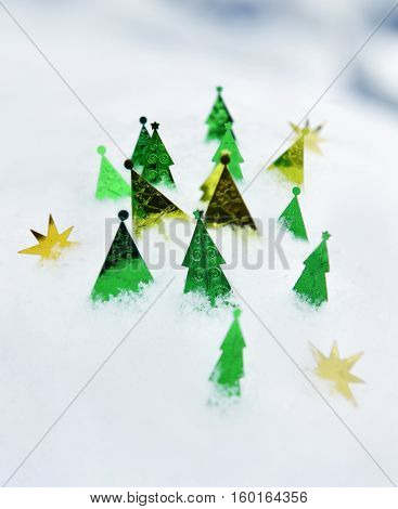 New Year still life with decorative conifers in snow. Winter seasonal holidays still life, New Year and Christmas concept