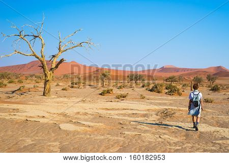 Tourist Walking In The Majestic Namib Desert, Sossusvlei, Namib Naukluft National Park, Main Visitor