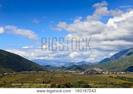 Green grape fields in Montenegro