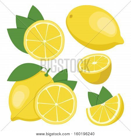 Lemon. Collection of whole and sliced lemon fruits. Vector illustration.