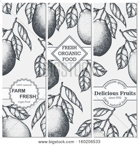 Three banner with hand-drawn pomelo. Vector illustration.